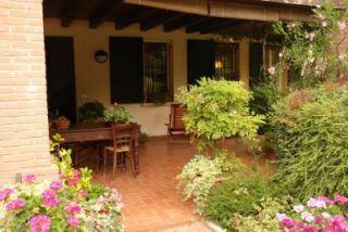 il mio giardino - Piccolo Giardino In Casa